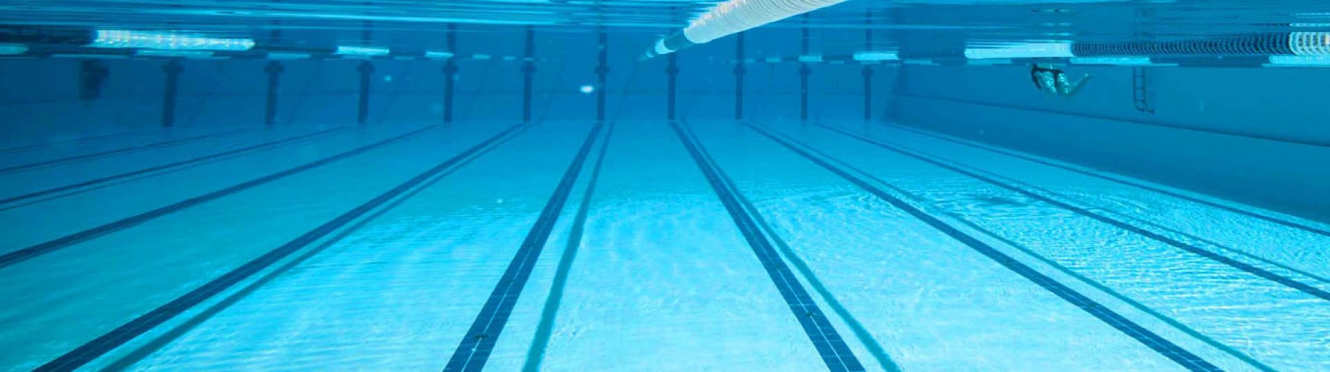 SSV Höchstädt Schwimmen